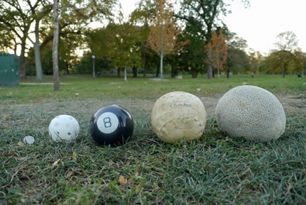 ball lineup web