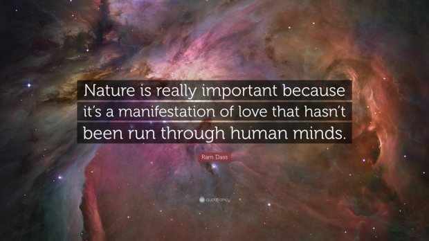 54520-Ram-Dass-Quote-Nature-is-really-important-because-it-s-a.jpg
